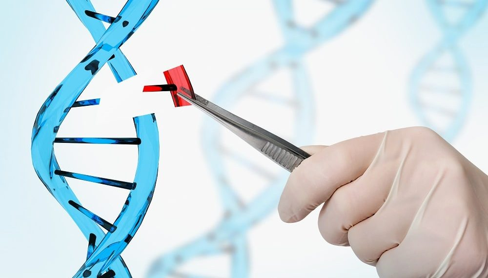 Hybrid Gene Therapy Approach Shows Promise in Treating Metabolic Diseases